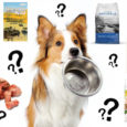 what is in your dog food?