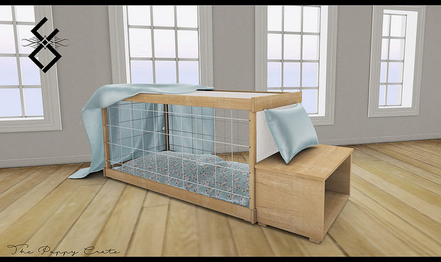 Potty Training Puppy Apartment Review