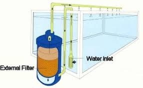 how-does-the-canister-filter-works