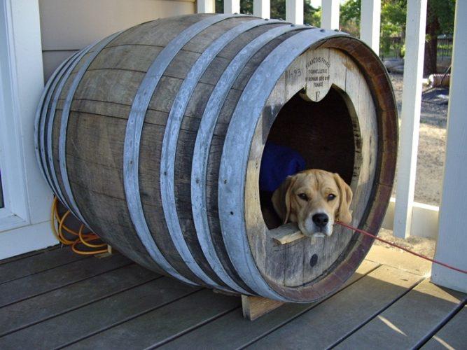 12 Wonderfully Unusual Dog Houses