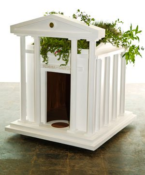 The Obama Dog Home