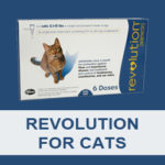 Revolution for cats reviews