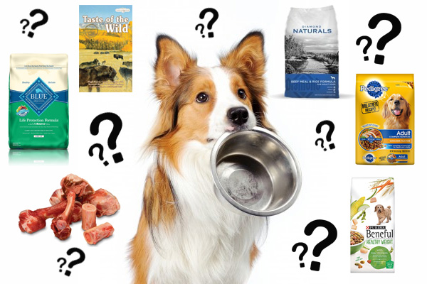 Good Dog Food Brand Names