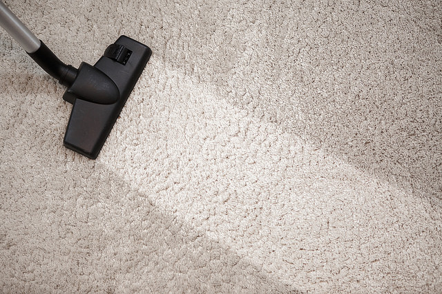 Best Carpet Cleaning Machine For Pet Urine Home