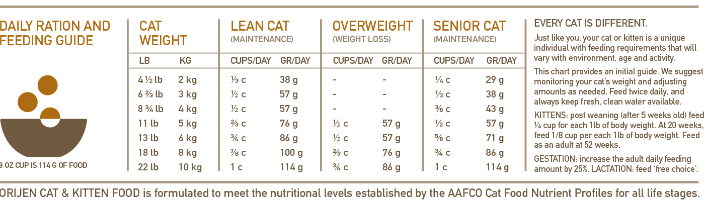 How Much Food Should I Feed My Cat Chart