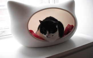 8 Best Cat Bed – Reviews and Buying Guide for 2018