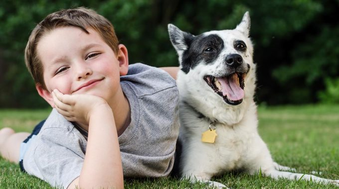 Boy Dog Names – How To Call Your Dog In A Cute Yet Manly Way